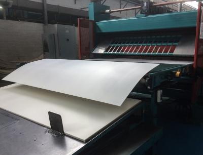 Herstellung der Stegplatten aus Biokunststoff