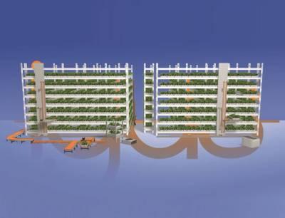 Vertical Farming gilt als eine vielversprechende Alternative zur konventionellen Landwirtschaft